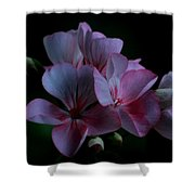Pink Geranium Shower Curtain