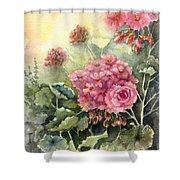 Pink Geranium's  Shower Curtain