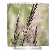 Pink Grass Shower Curtain