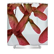 Pink Helicopters Shower Curtain