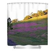 Pink Hills Shower Curtain
