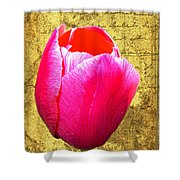 Pink Impression Tulip Shower Curtain