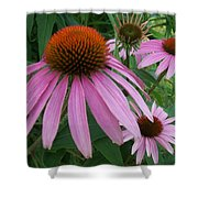 Pink In The Garden Shower Curtain