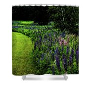 Pink In The Lupine Margin Shower Curtain