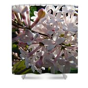 Pink Lilac Blossom Shower Curtain