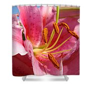Pink Lilies Art Prints Lily Flowers 3 Giclee Artwork Baslee Troutman  Shower Curtain