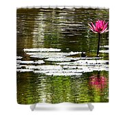 Pink Lily 12 Shower Curtain