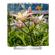 Pink Lily By The Lake Shower Curtain