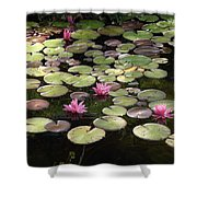 Pink Lily Pads Shower Curtain