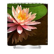 Pink Lily Reflection 4 Shower Curtain