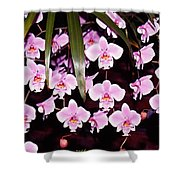 Pink Little Orchids Shower Curtain