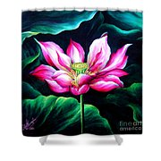 Pink Lotus From L.a. City Park Shower Curtain
