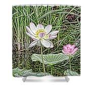Pink Lotus  Shower Curtain