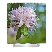 Pink Love 6 Shower Curtain