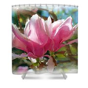 Pink Magnolia Blossoms Shower Curtain