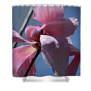 Pink Magnolia Closeup Shower Curtain