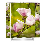 Pink Magnolia Triptych Shower Curtain
