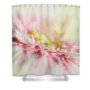 Pink Shower Curtain by Mark Johnson