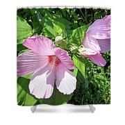 Pink Marsh Mallow Wildflower Shower Curtain
