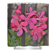 Pink Oleander II Shower Curtain