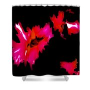 Pink On Black Shower Curtain