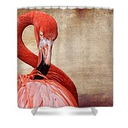 Pink On Brown Scratch Shower Curtain
