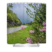 Pink On The Parkway Shower Curtain