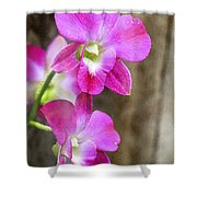 Pink Orchid Duo Shower Curtain
