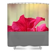 Pink Passion Petunia Shower Curtain