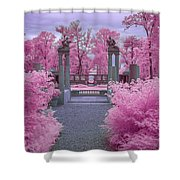 Pink Path To Paradise Shower Curtain