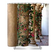 Pink Peacock Colored Bougainvillea Blossoms Climbing Pillars Photograph By Colleen Shower Curtain