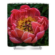 Pink Peony 2016 Shower Curtain
