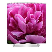 Pink Peony Watercolor Shower Curtain