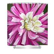 Pink Petal Blast Shower Curtain