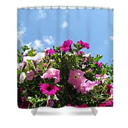 Pink Petunias In The Sky Shower Curtain