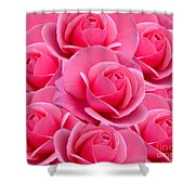 Pink Pink Roses Shower Curtain
