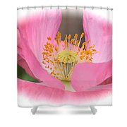 Pink Poppy Serenity Shower Curtain