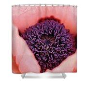 Pink Poppy Soul Shower Curtain