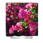 Pink Profusion 1 Shower Curtain