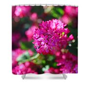 Pink Profusion 2 Shower Curtain