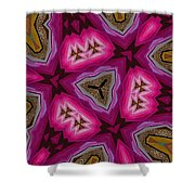 Pink And Gold Eruption Shower Curtain