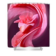 Pink Roas In A Swirl Shower Curtain