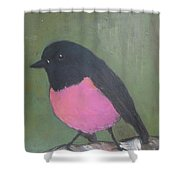 Pink Robin Shower Curtain