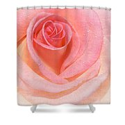 Pink Romance Shower Curtain