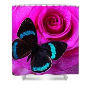 Pink Rose And Black Blue Butterfly Shower Curtain
