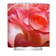 Pink Rose Art Prints Floral Summer Rose Flower Baslee Troutman Shower Curtain