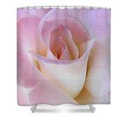 Pink Rose Beginnings Shower Curtain