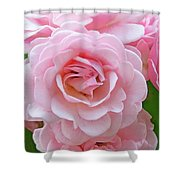 Pink Rose Cluster IIi Shower Curtain