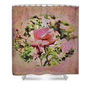 Pink Rose Doily Shower Curtain