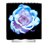 Pink Rose Has The Blues Shower Curtain